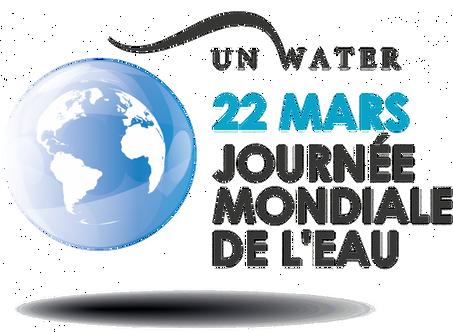 Journée Mondiale de l'eau - 22 mars 2020