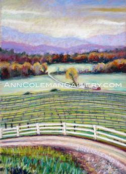 Vineyard: Autumn