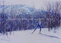 Skate Skier