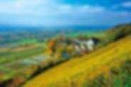 Warth-Weiningen-40586024.jpg