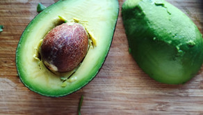 How To Grow an Avocado Seed - Step by Step Guide