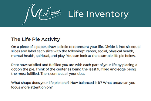 Life Inventory Activity