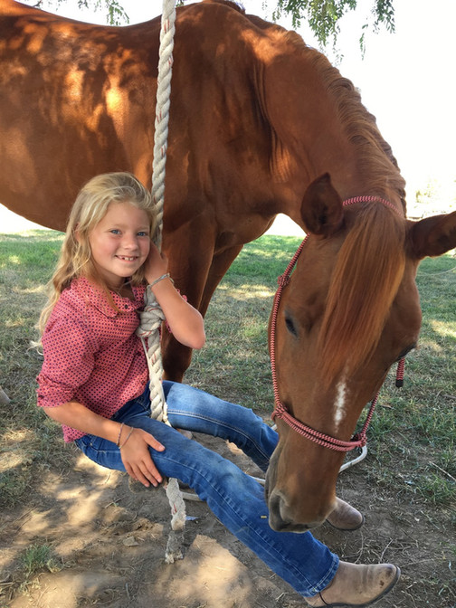 Iron Legacy Ranch Horse Riding Lessons, Summer Camps, Ritzville WA
