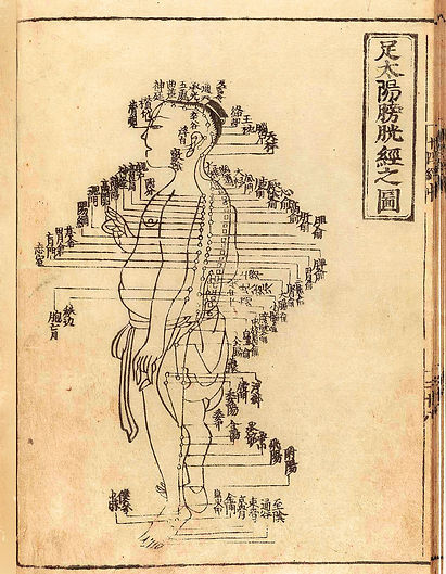 sarasota medical acupuncture, chinese medicine, functional neurology