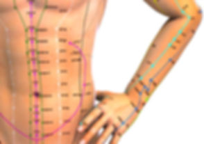 sarasota medical acupuncture, chinese medicine, functional neurology, electro-acupuncture, tui-na