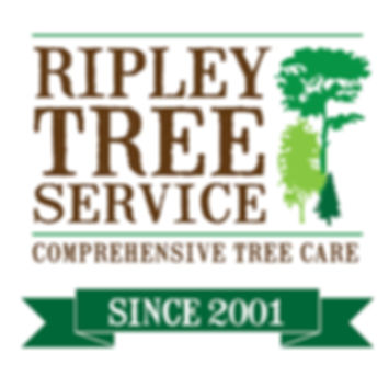Ripley Tree Service, Comprehensive Tree Management, Tree Fertilization, Tree Pruning, Yard Expansion