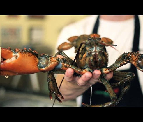 LOTSA LOBSTER - Big Lobster in hand.jpg