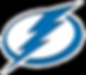 Tampa Bay Boltz logo