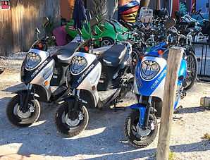 Scooter Rentals Near Me On Siesta Key