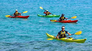 Kayak Rentals Near Me On Siesta Key