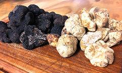 La-Violetta-truffles.jpg