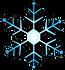 SKI CLUB OF SARASOTA-snowfalke.png