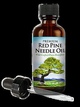 red-pine-needle-oil-pinus-densiflora-2b.png