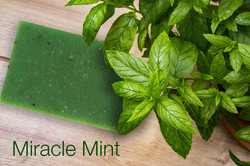 Miracle Mint