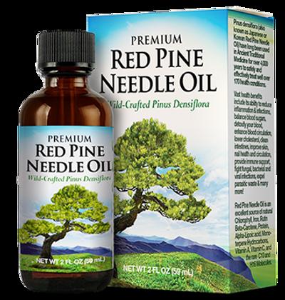 red-pine-needle-oil-pinus-densiflora.png