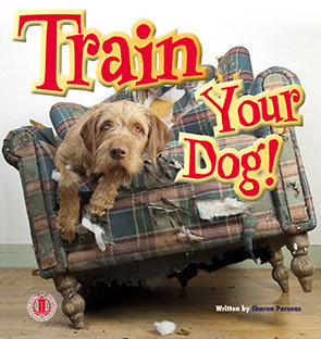 Train Your Dog! $NZ 39.99 (6-pack)