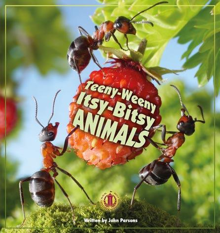 Teeny-Weeny Itsy-Bitsy Animals
