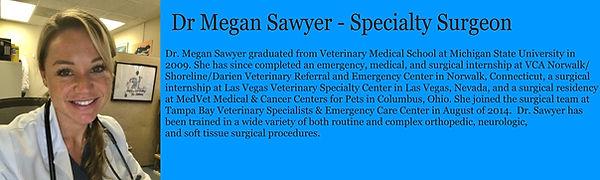 Sawyer001-1.jpg