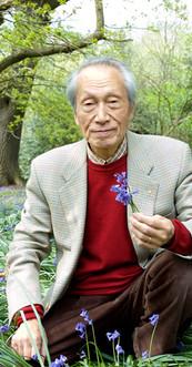 Shoichi Hasegawa, Artist