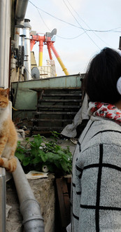 Waiting, the Seller and the cat