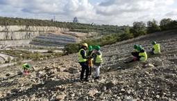 Fossiliensuche bei der geologischen Führung
