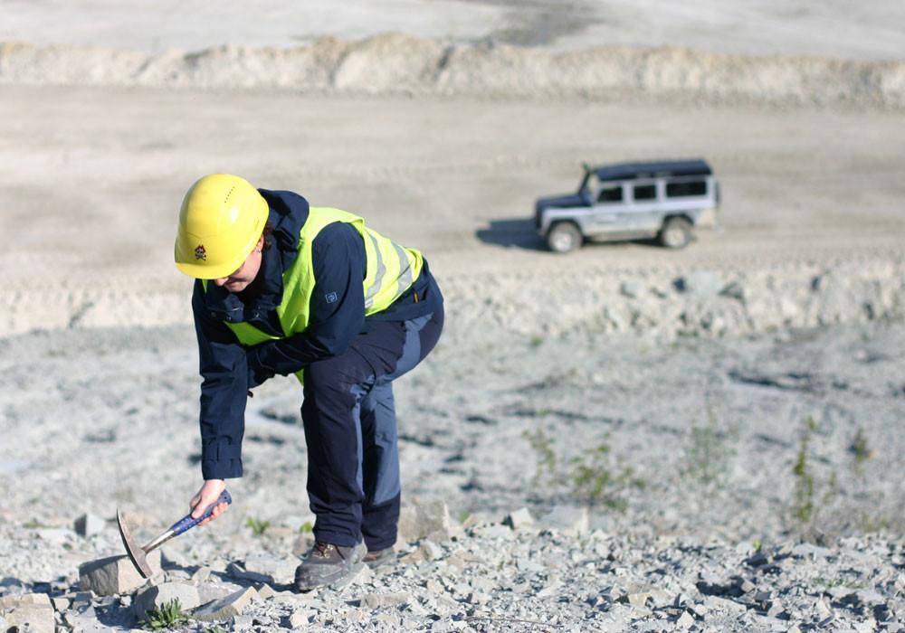 Fossilien sammeln im Tagebau