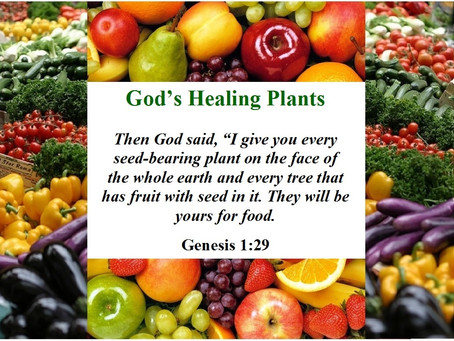 Eating In the Garden of Eden