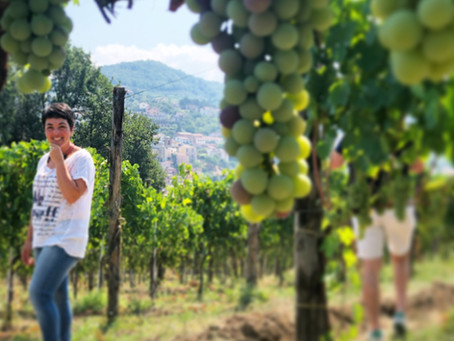 Meet the Winemakers: La Cantina Di Enza