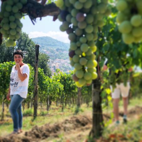 Meet the Winemakers: La Cantina Di Enza
