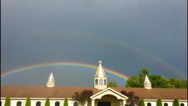 Pure Gold Rainbow.jpg