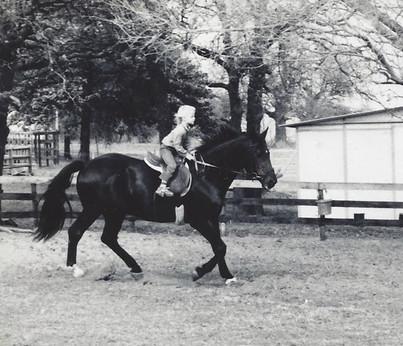Beaute ridden by child' 1.jpg