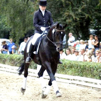 Lord%20Luciano%20trot_edited.jpg