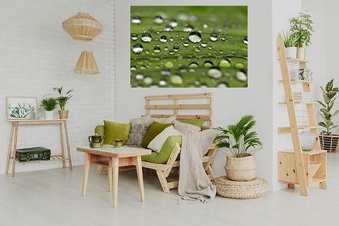 dance of raindrops.jpg