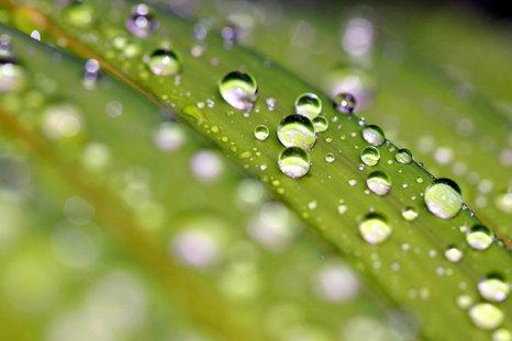 Bubbles of Potentials