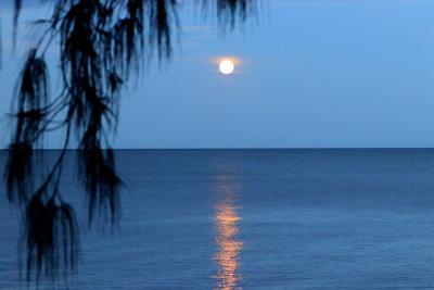 Full Moon Wink