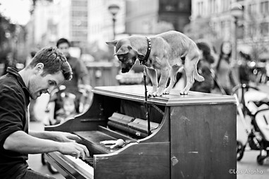 NYC People, 2011