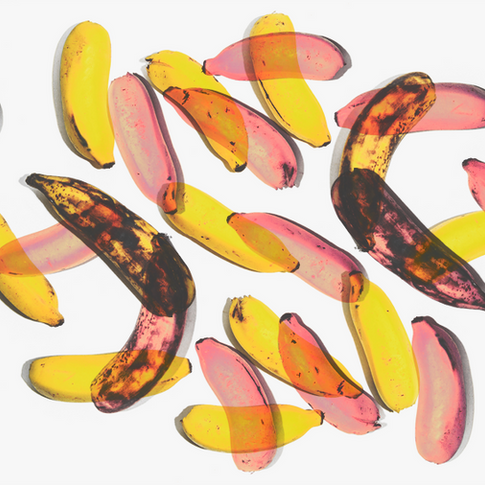 Bananada, 2015