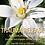 Thumbnail: Trauma Release