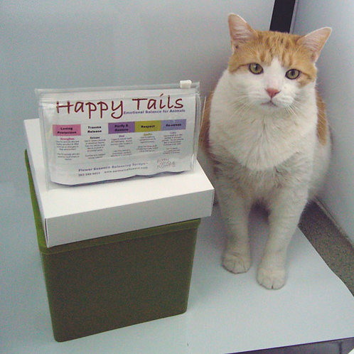 Happy Tails Pet Collection