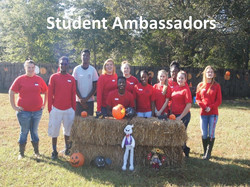 Walton Academy Student Ambassadors