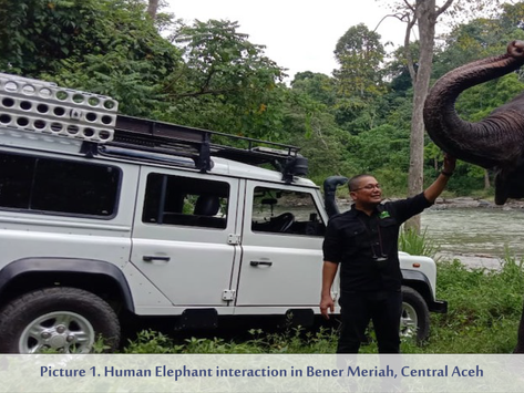 JGC Supports Research on Human-Elephant Conflict (HEC) in Aceh, Indonesia
