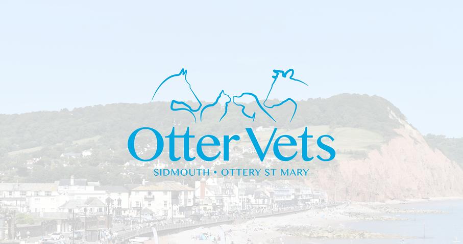 Otter Vets logo