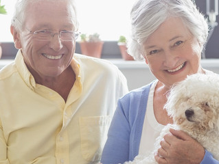 7 Reasons Older People Need Pets
