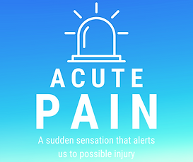 Acute pain meaning