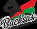 Backsa's logo.png