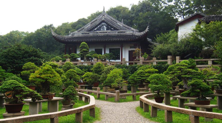 Bonsai Garden (盆栽园)