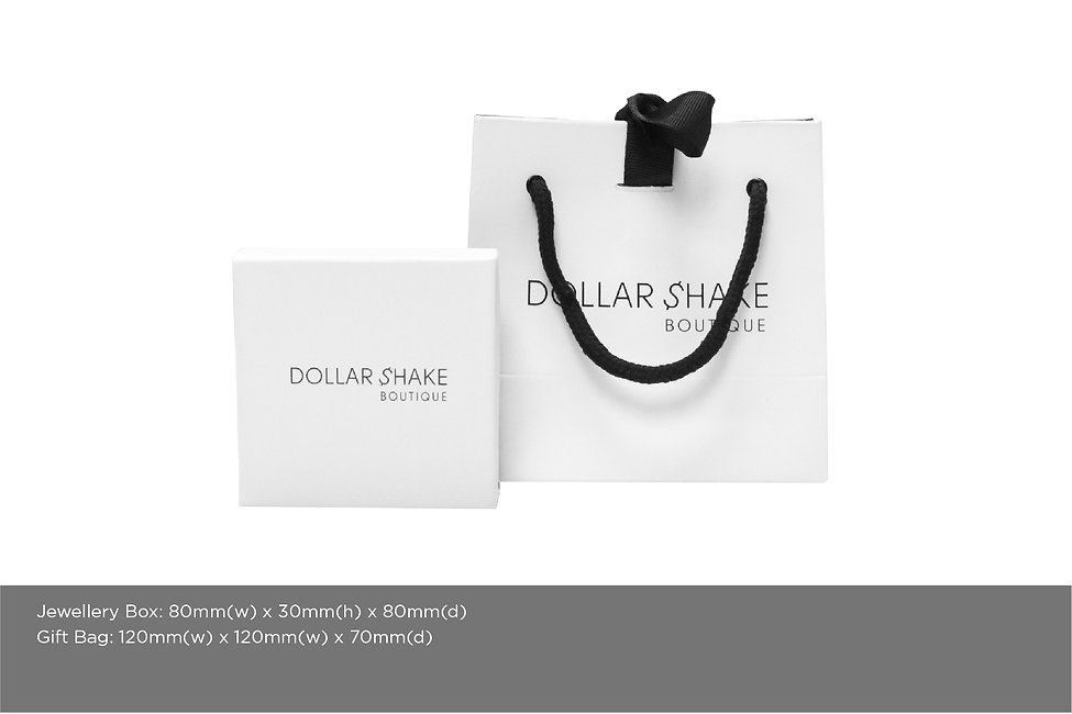 DOLLAR SHAKE PACKAGING WEBSITE-01.jpg