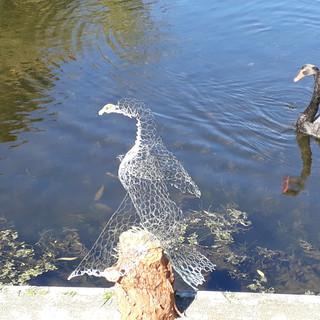 Cormorant on log (SOLD)