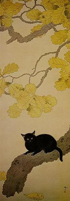 black-cat-kuroki-neko-1910.jpg