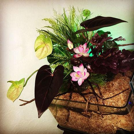 季節にふさわしい草花と生体をご用意し年間を通じて 空間をコーディネートいたします。 コンパクトで置き場所を選ばないタイプです